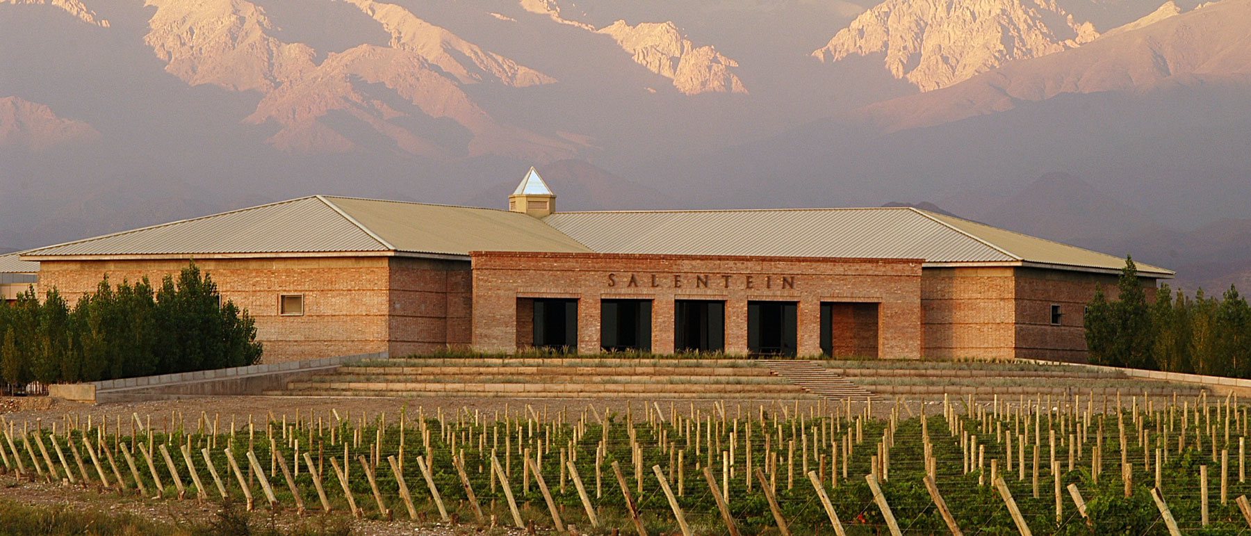 Salentein Winery 3