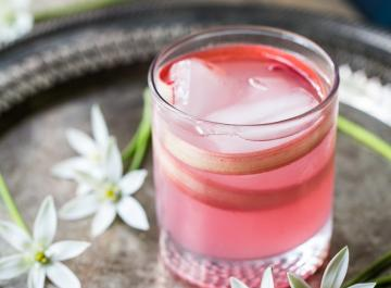 Spiced Rhubarb Collins Cocktail